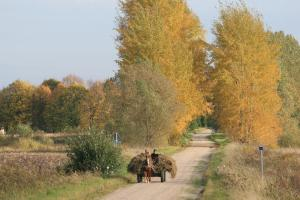 village road lithuania